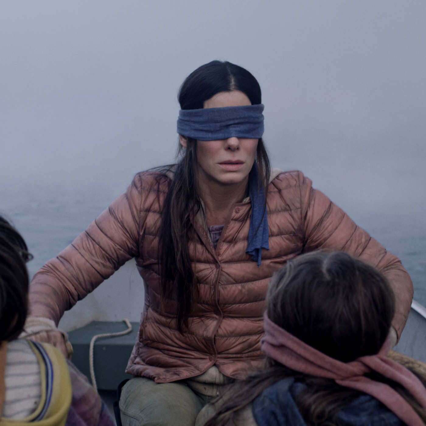 Bird Box Blank Meme Template