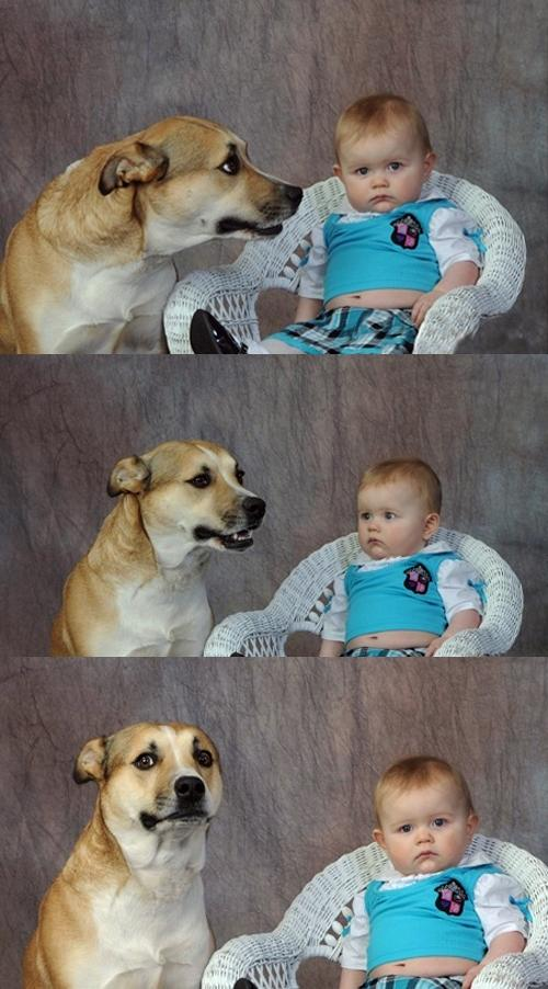 Dad Joke Dog Blank Meme Template