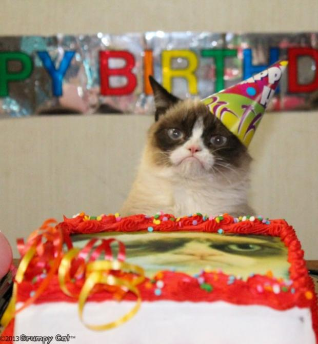 Grumpy Cat Birthday Blank Meme Template