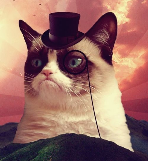 High Quality Grumpy Cat Top Hat Blank Meme Template