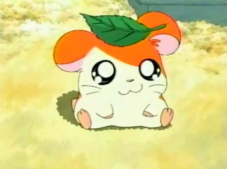 High Quality Hamtaro Blank Meme Template