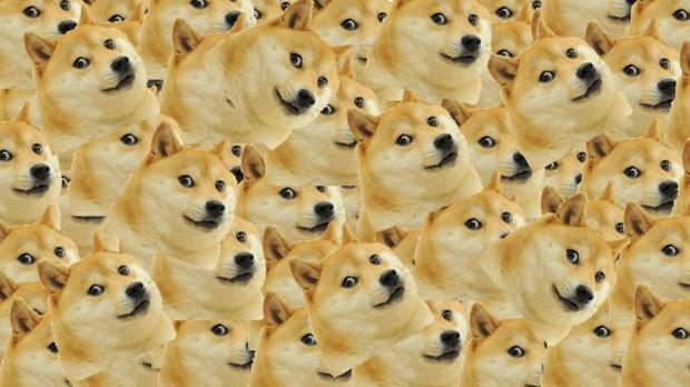 High Quality Multi Doge Blank Meme Template