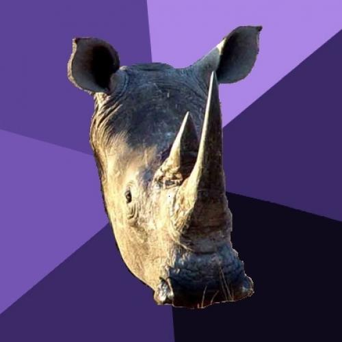 Sexually Oblivious Rhino Blank Meme Template