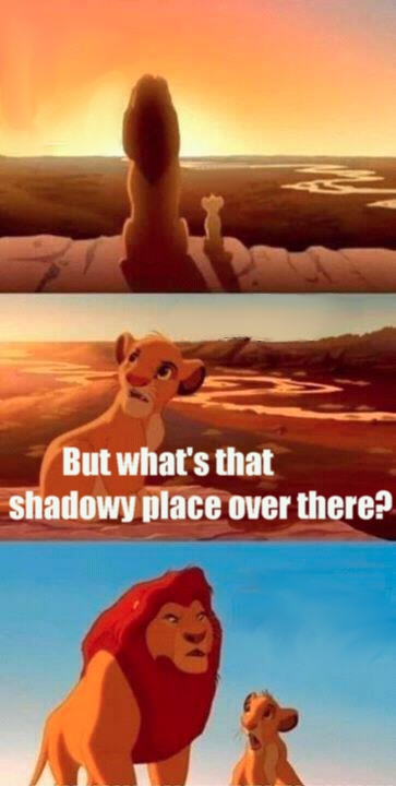 High Quality Simba Shadowy Place Blank Meme Template