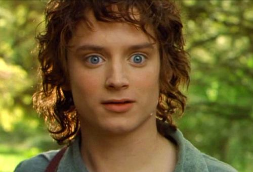 Surpised Frodo Blank Meme Template