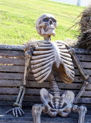Waiting Skeleton Blank Meme Template
